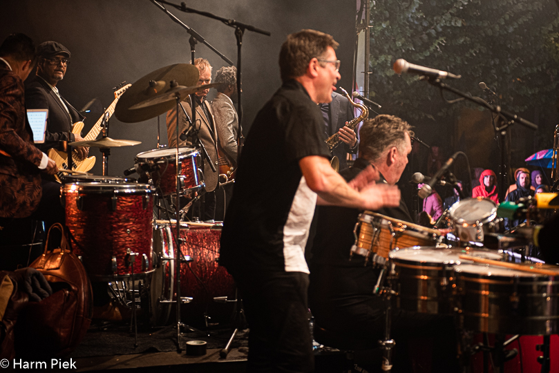 Haarlem Jazz & More 2019 - New Cool Collective